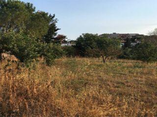 Otros en venta en Llagostera de 4330  m²