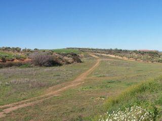 Camino Valdenoches 3