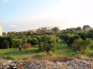 Otros en venta en Pobla De Vallbona (la) de 8652  m²