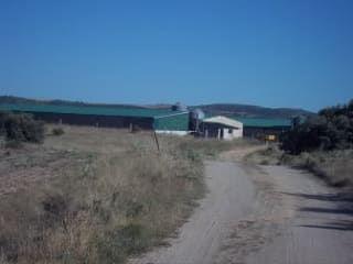 Otros en venta en Calzada De Oropesa