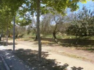 Otros en venta en Medina Sidonia de 4365  m²