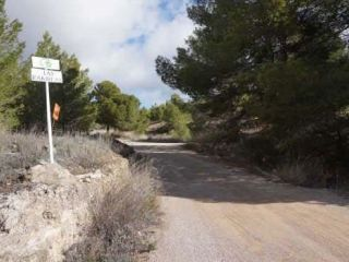 Otros en venta en Elche De La Sierra de 12000  m²