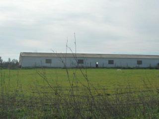 Nave en venta en Pedrera de 1200  m²