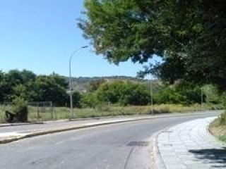 Pisos banco San Roque
