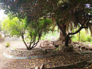 Piso en venta en San Cristobal De La Laguna de 297  m²
