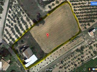 Masia con terreno, Naves agricolas y vivienda. 2